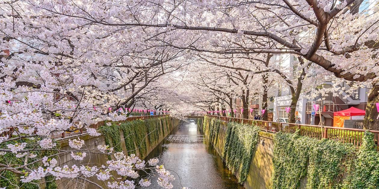 Quartier de Nakameguro - Tokyo - Japon