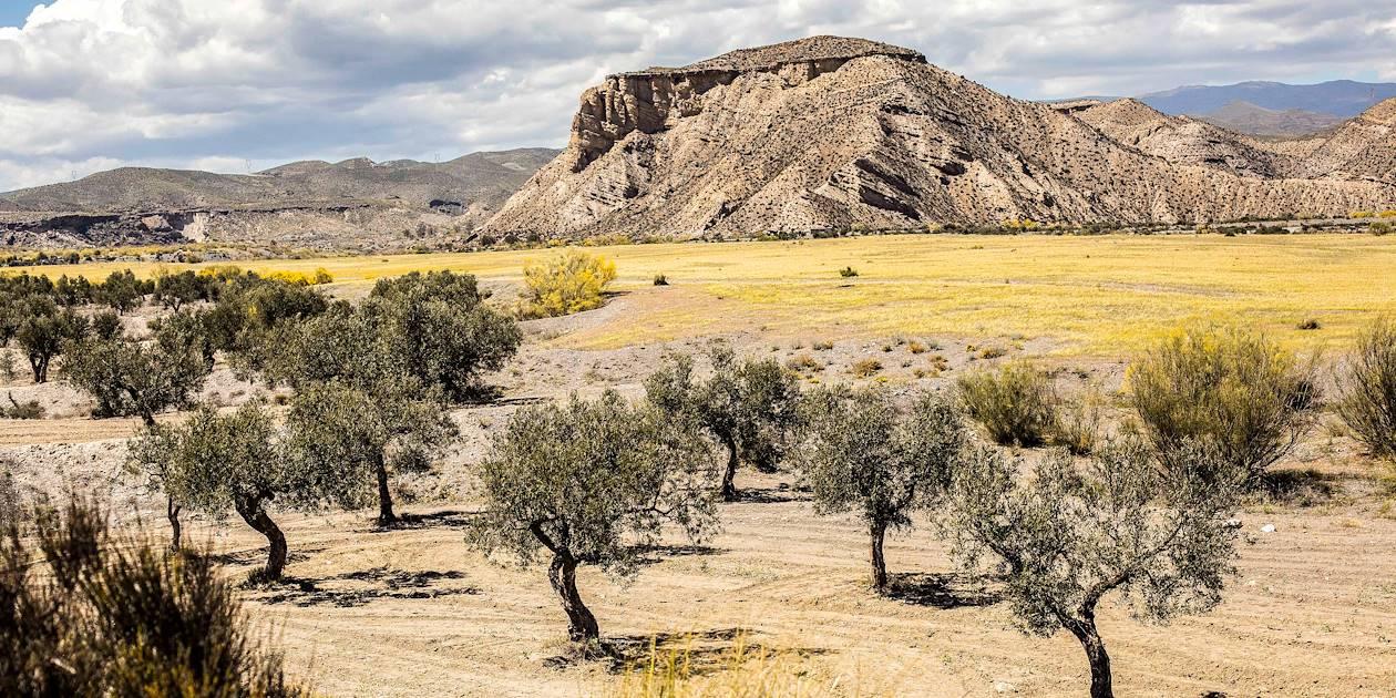 Désert de Tabernas - Andalousie - Espagne