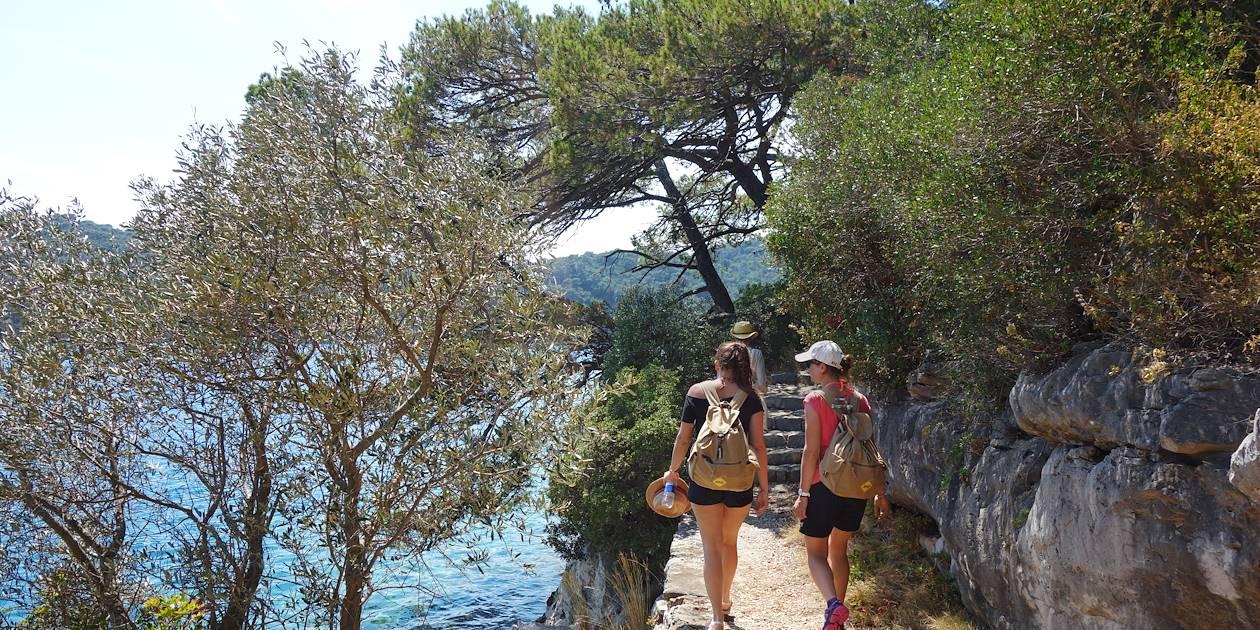 Parc national de Mljet - Île de Mljet - Croatie