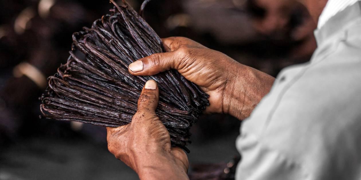 Vanille d'Antalaha - Madagascar
