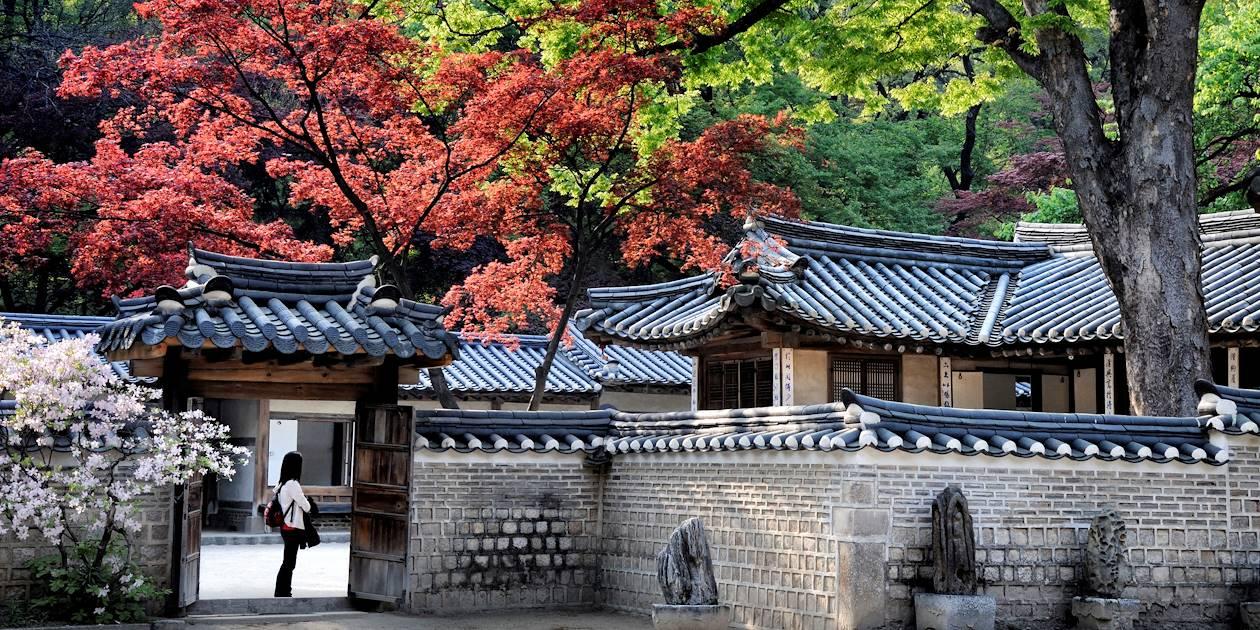 Le Jardin Secret (Huwon) de Changdeokgung à Séoul - Corée du Sud