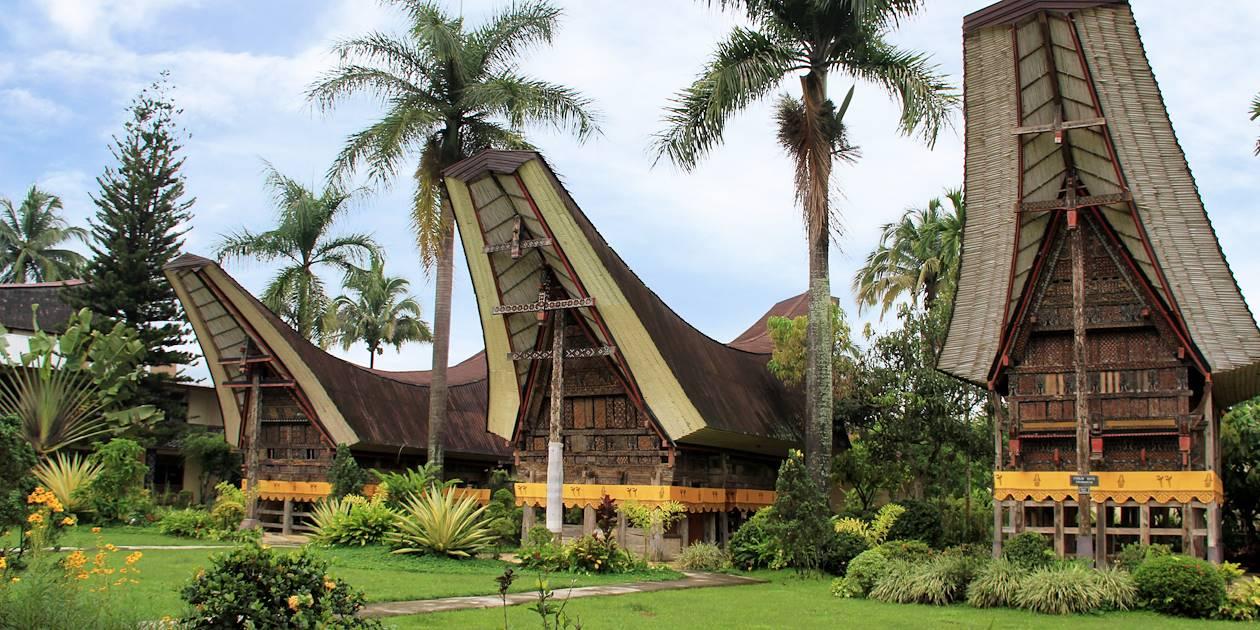 Village  toraja - Région de Rantepao - Sulawesi (Célèbes) Indonésie