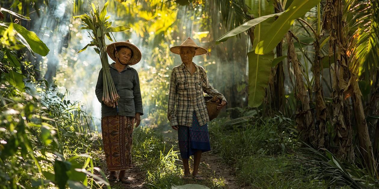 Femmes de la tribu Karen - Thaïlande