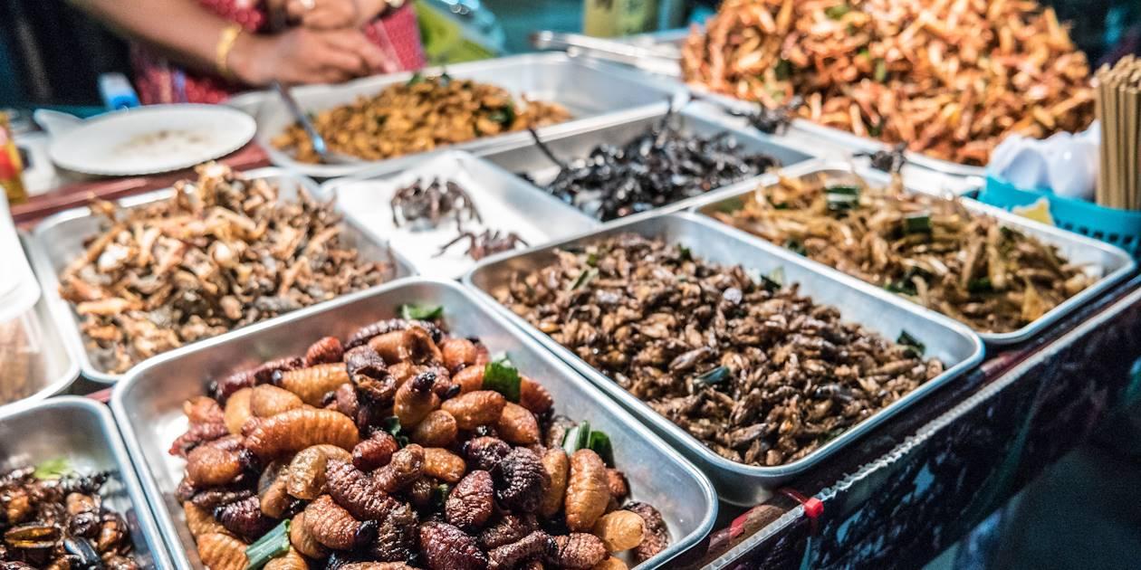 Insectes grillés sur Khao San Road - Bangkok - Thaïlande