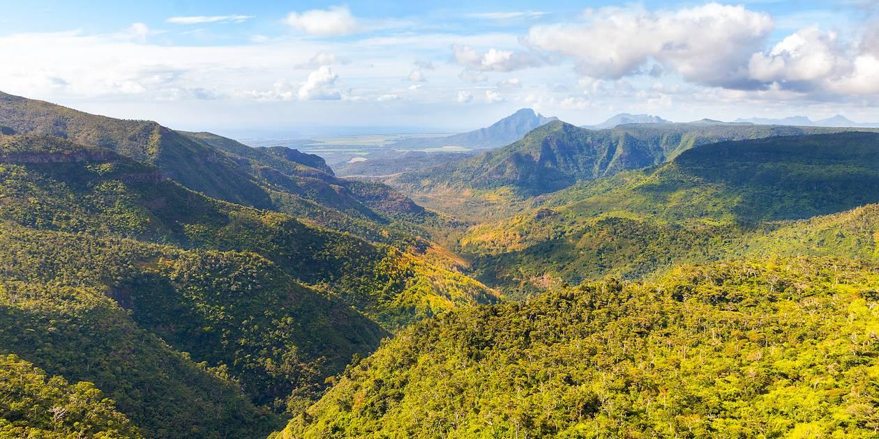 Parc national des Gorges de la Rivière Noire - Rivière Noire - Ile Maurice