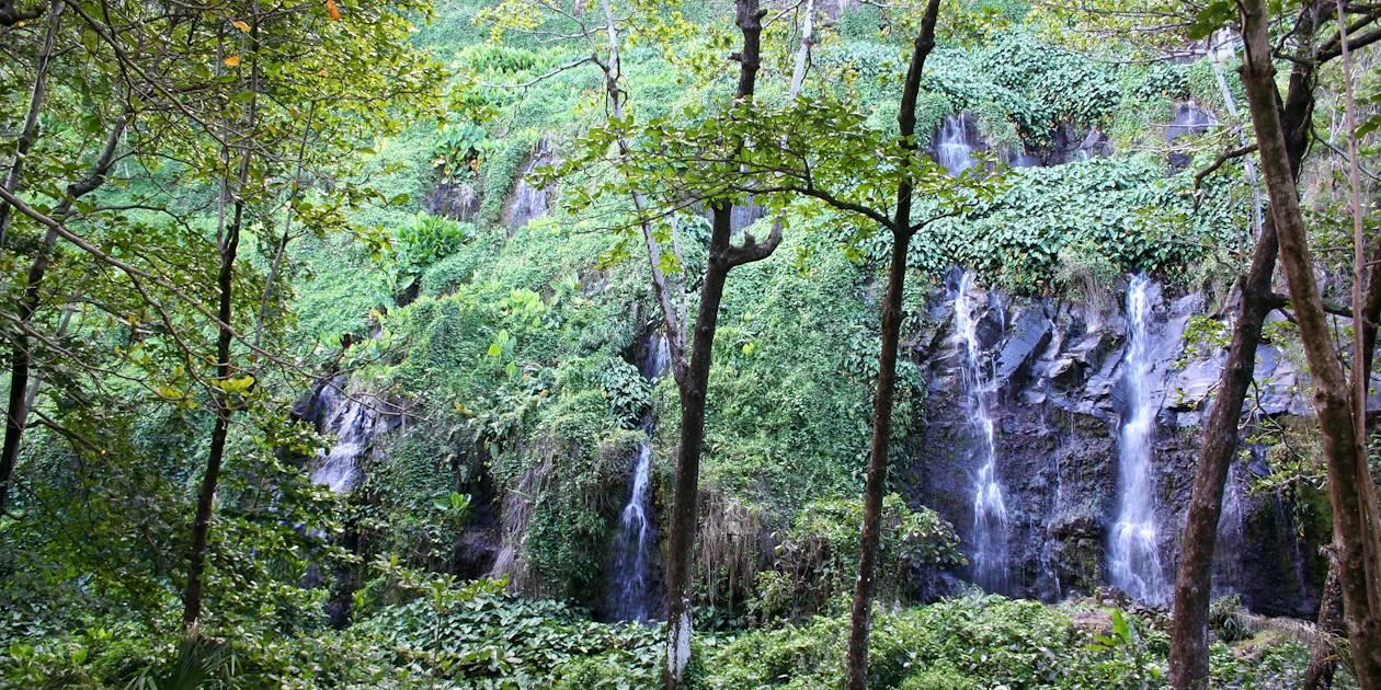Anse des cascades - Sainte Rose - La Réunion