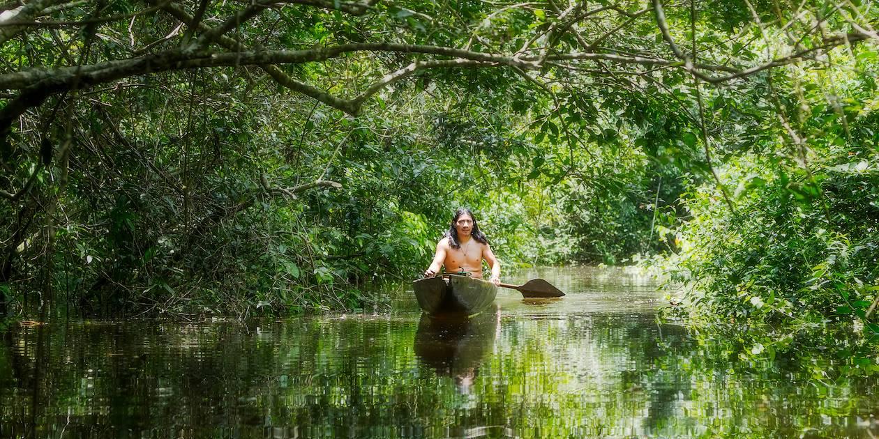 Amazonie - Brésil