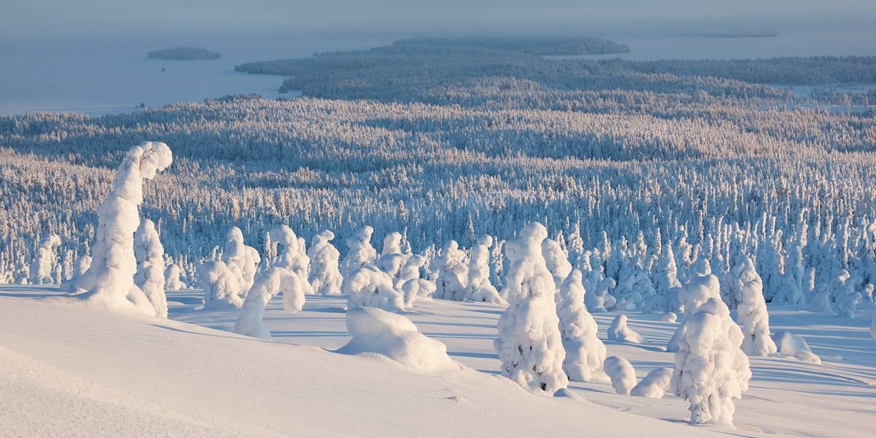 Parc National de Riisitunturi - Laponie - Finlande