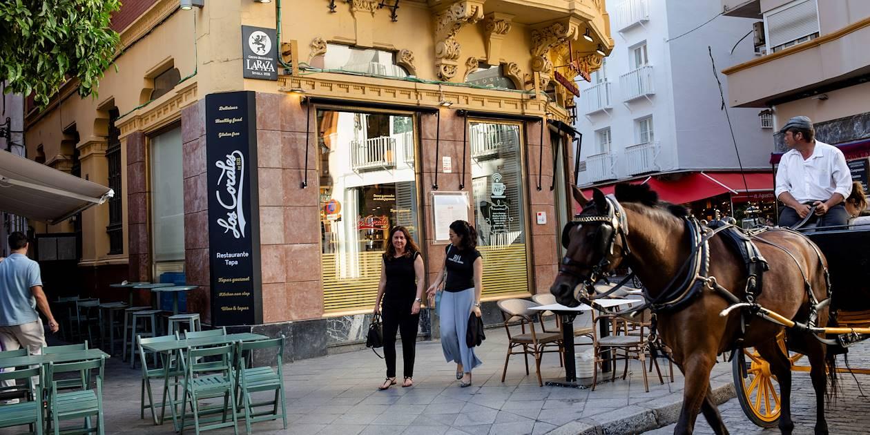 Bar à tapas dans Séville - Andalousie - Espagne