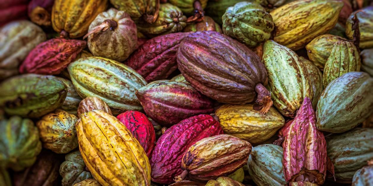 Fèves de cacao - Madagascar