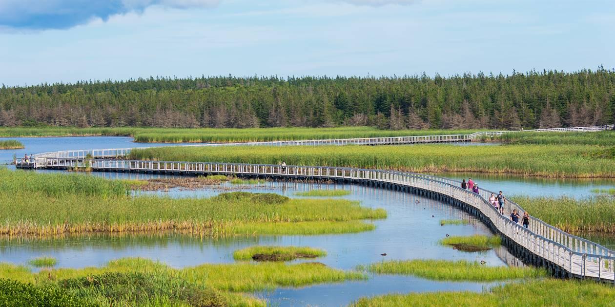 Promenade sur les étangs, parc national de l'Île-du-Prince-Édouard - Greenwich  - Canada