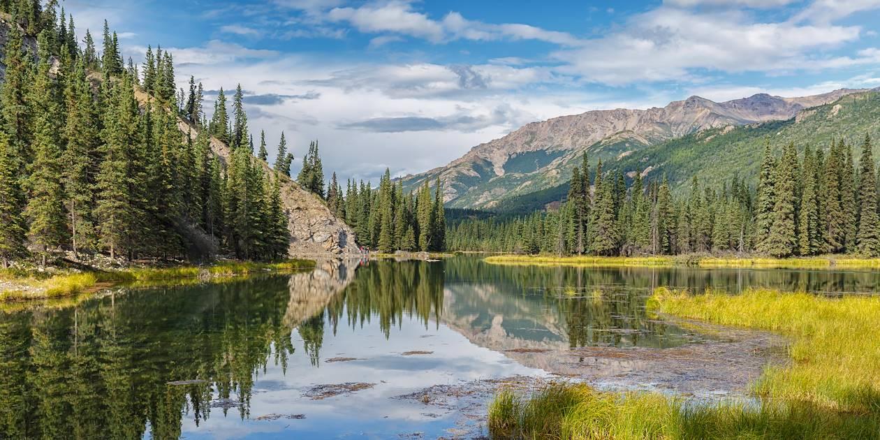 Denali national park - Alaska - Etats-Unis