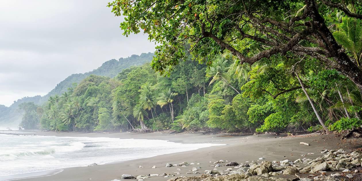 Plage du Parc National Corcovado - Péninsule d'Osa - Costa Rica
