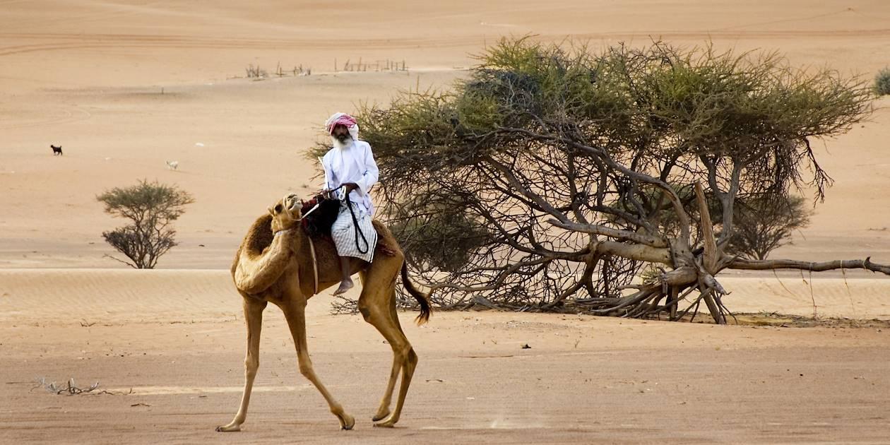 Dans le désert de Wahiba - Oman