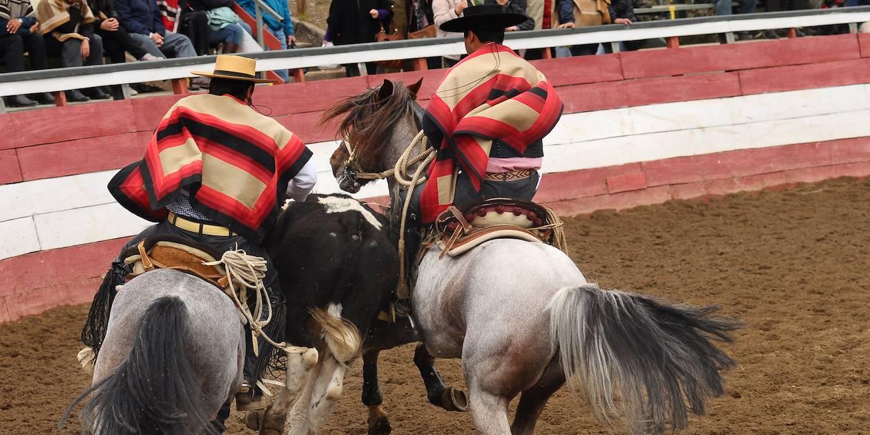 Rodeo de criaderos lors des Fiestas Patrias - Chili
