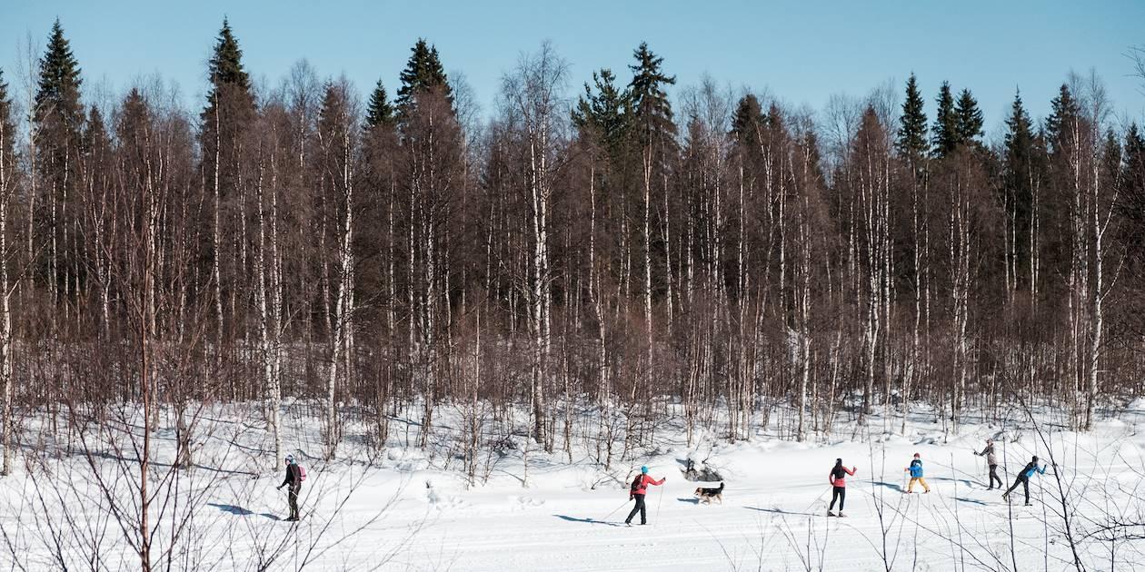 Skieurs de fond sur le fleuve gelé Ounasjoki - Rovaniemi - Laponie - Finlande