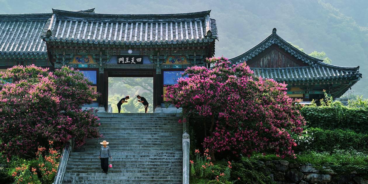 Temple de Pyochungsa - Miryang - Corée du Sud