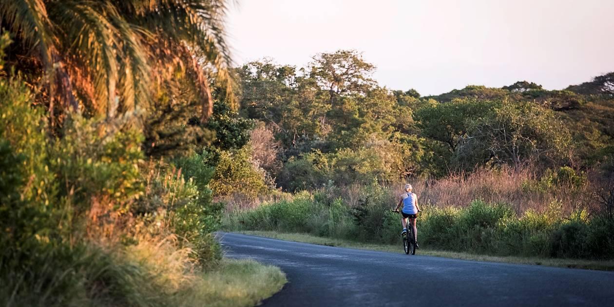 Balade à vélo dans le parc de la zone humide d'iSimangaliso - KwaZulu Natal - Afrique du Sud