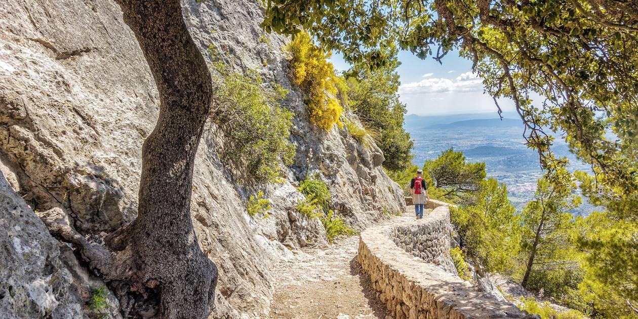 Descente du Puig d'Alaró vers Alaró  - Majorque - Les Baléares - Espagne