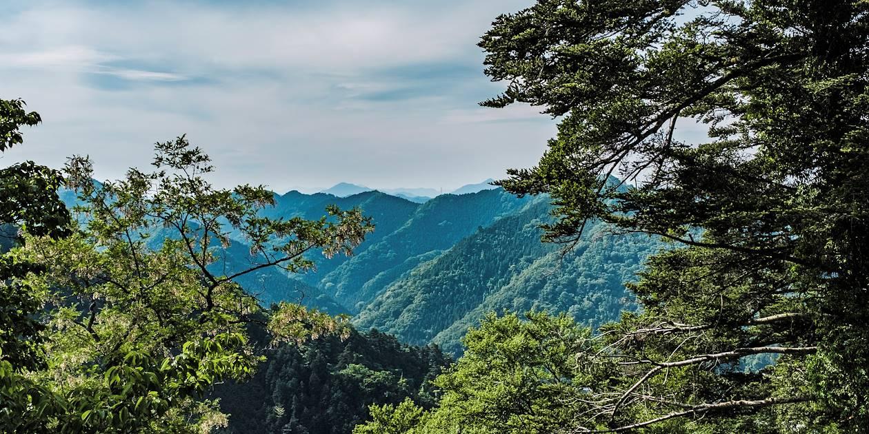 Point du vue depuis le sommet du Mont Takao - Parc National Meiji no Mori Takao - Japon