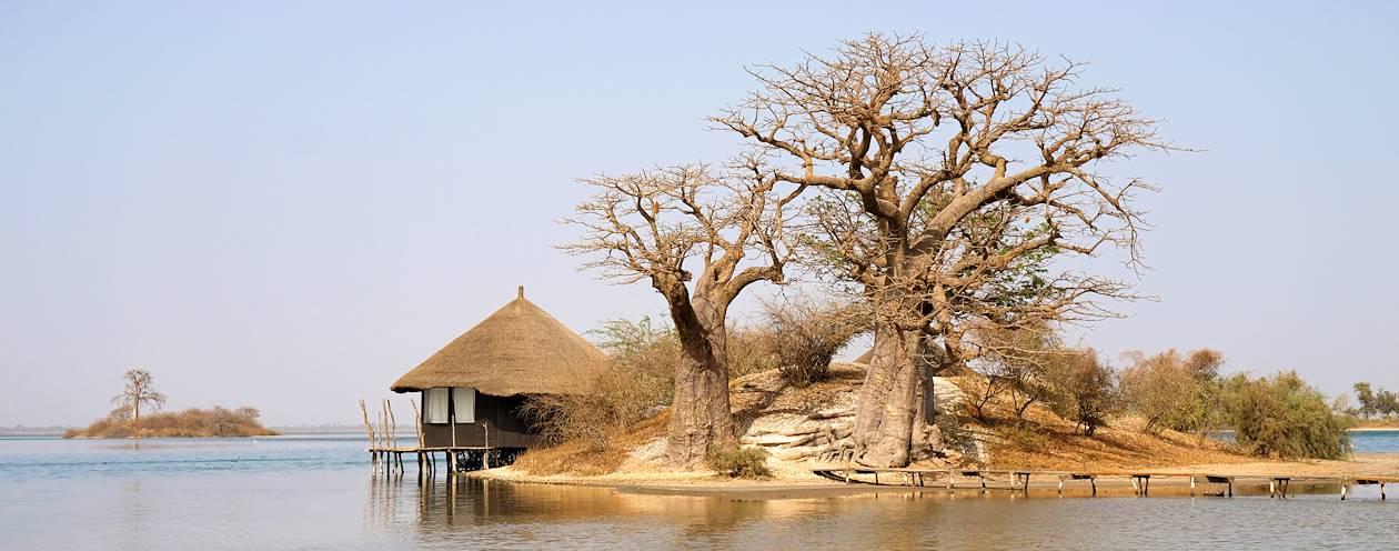 Le Lodge des Collines de Niassam - Palmarin - Sénégal