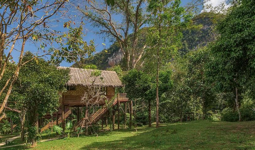 Our Jungle Camp - Khao Sok - Thaïlande