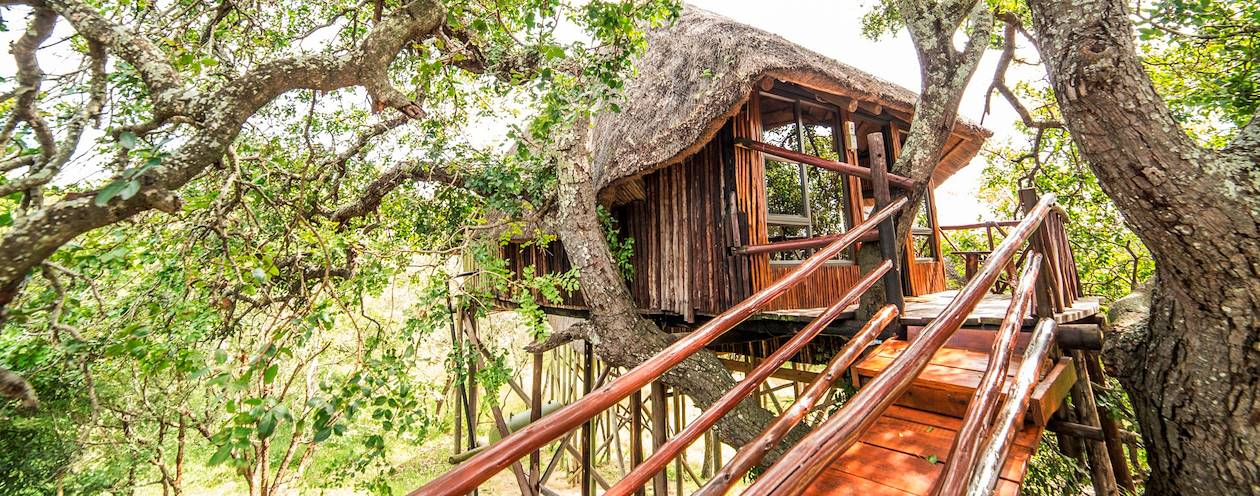 Pezulu Tree House Lodge - Hoedspruit - Afrique du Sud