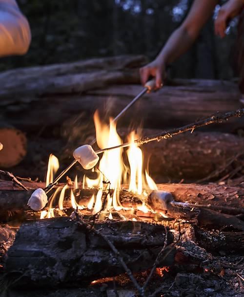 Feu de camp et marshmallows dans les bois - Canada