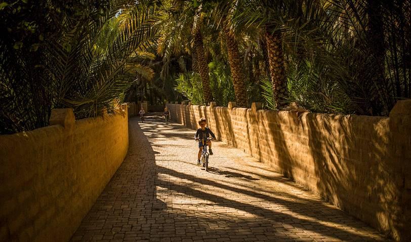 Au coeur de l'Oasis d'Al Ain : la Palmeraie - Al Ain - Emirats Arabes Unis