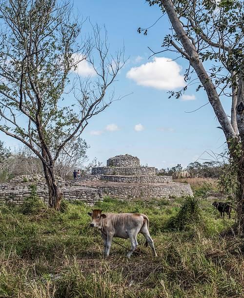 Site archéologique maya de Yaxuna - Yaxuna - Yaxcaba - Yucatan - Mexique