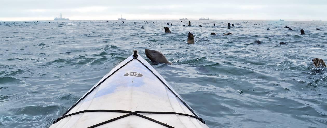 Kayak à Walvis Bay - Région d'Erongo - Namibie