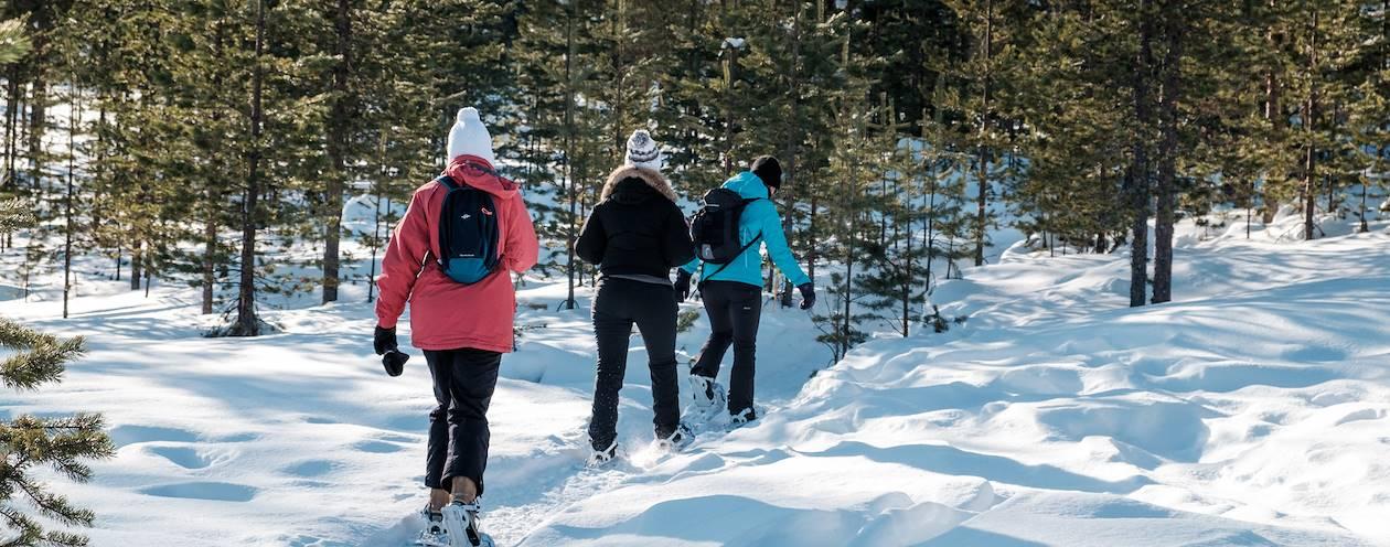 Balade en raquettes - Rovaniemi - Laponie - FInlande