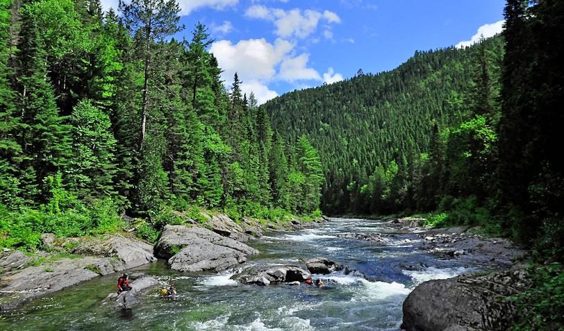 Plongée en apnée avec les saumons dans la rivière Matapédia - Matapédia - Québec - Canada
