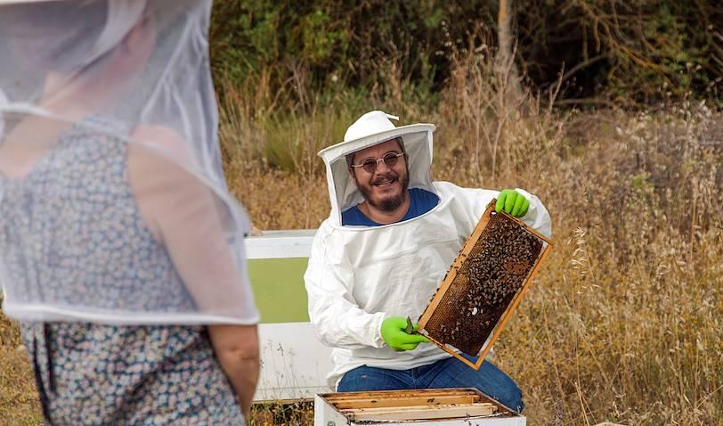 Dans la peau d'un apiculteur - Nauplie - Péloponnèse - Grèce