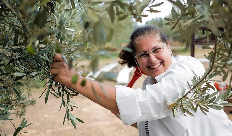 Balade autour de l'huile d'olive - Nauplie - Péloponnèse - Grèce