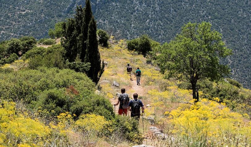 Randonnée sur le sentier antique de Delphes - Grèce