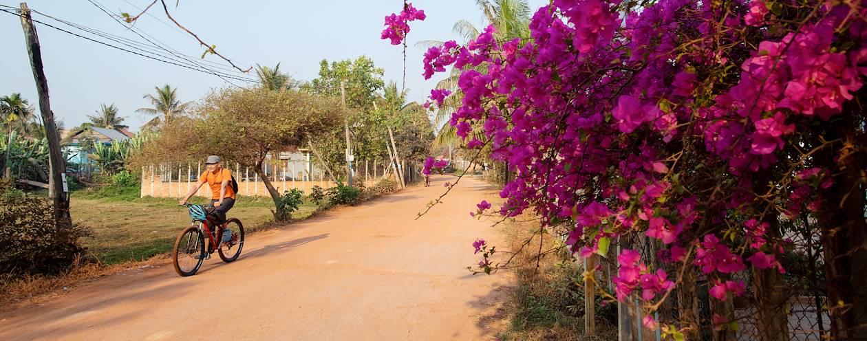 Découverte de Siem Reap et sa campagne, à vélo électrique - Cambodge