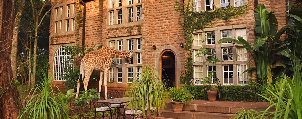 Girafe près du musée de Karen Blixen - Nairobi - Kenya