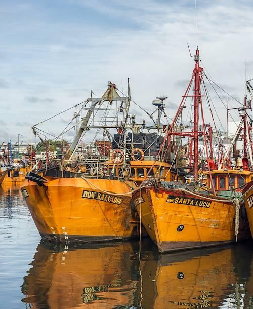 Bateaux de pêche - Argentine