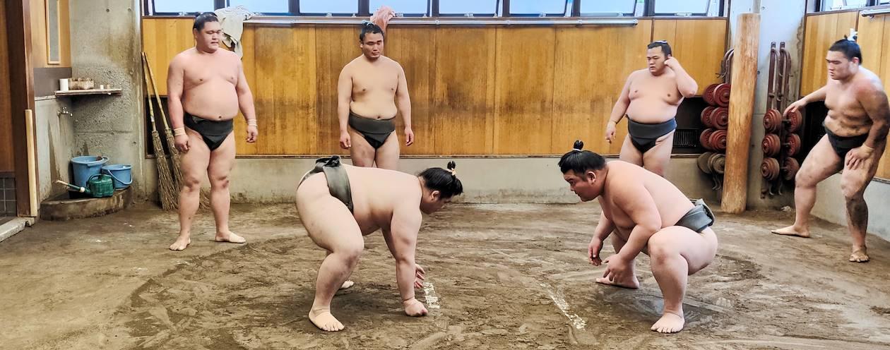 Visite d'une écurie de sumo à Tokyo - Japon