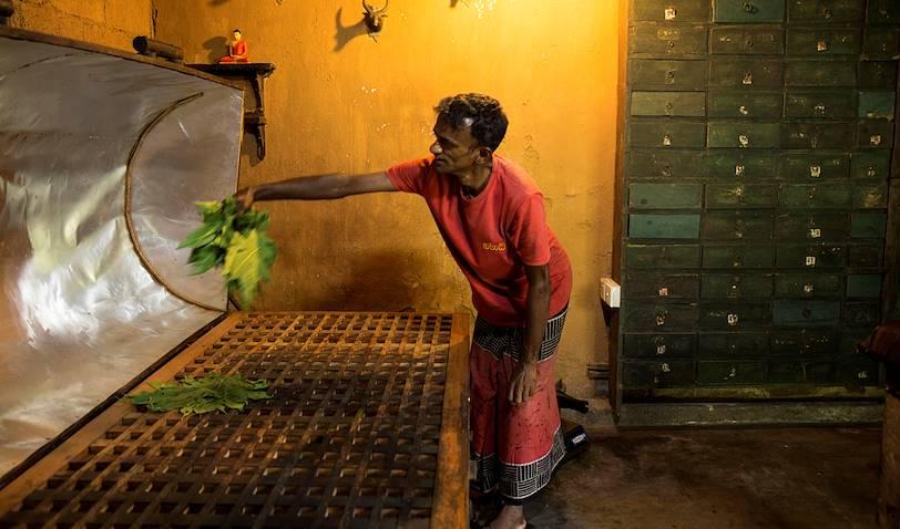 Employé préparant un bain à vapeur - Kandy - Centre - Sri Lanka