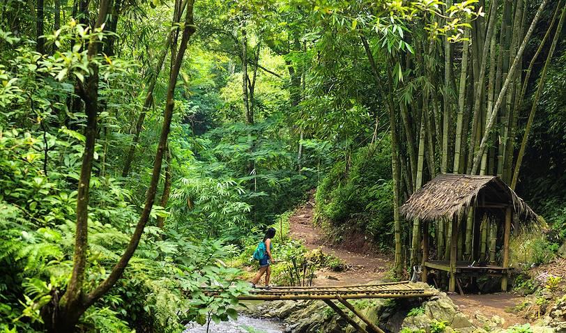 Randonnée dans la région de Munduk - Bali - Indonésie