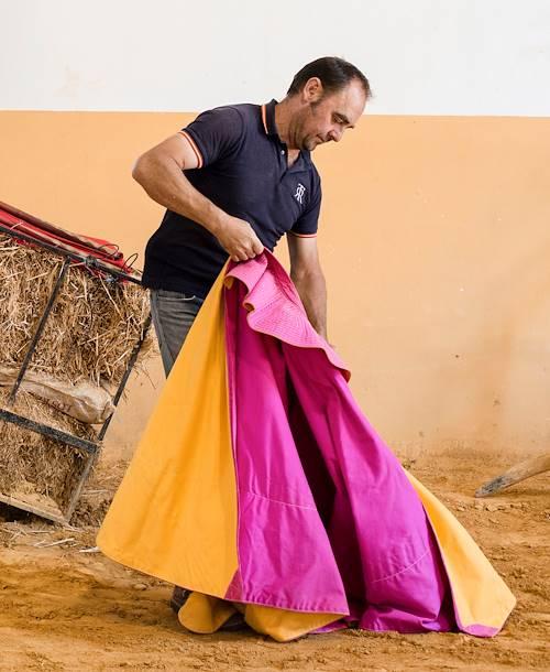 Les taureaux de combat et les chevaux andalous - Ronda - Andalousie - Espagne