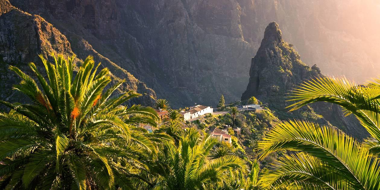 Parc Masca - île de Ténérife - Iles Canaries - Espagne
