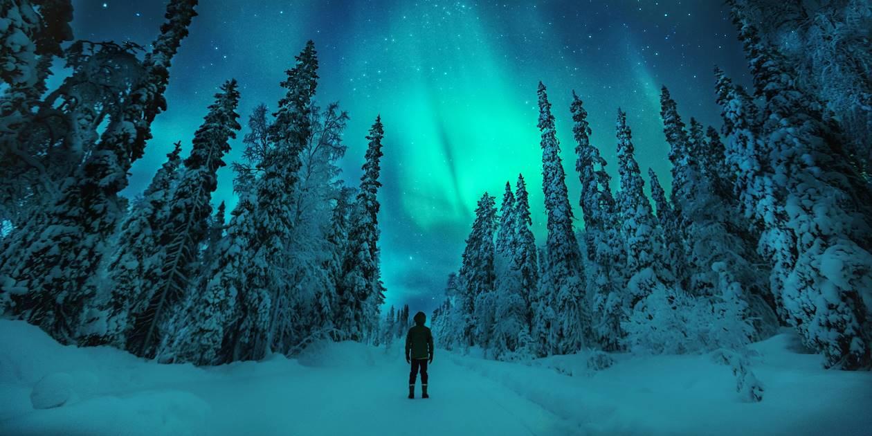 Aurore boréale - Ylläs - Finlande