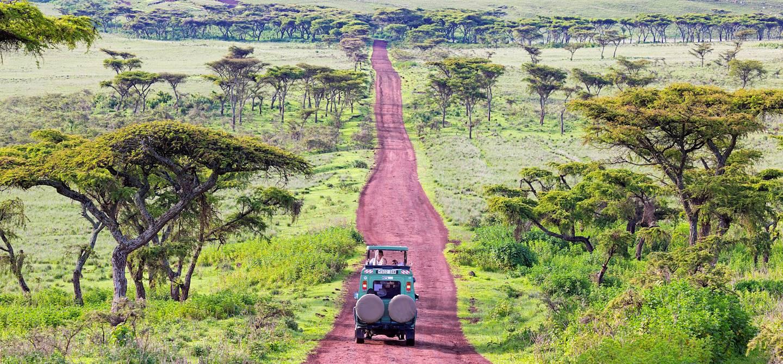 Safari près du cratère du Ngorongoro - Tanzanie