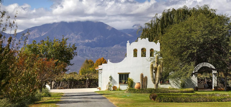 Vignoble près de Cafayate - Province de Salta - Argentine