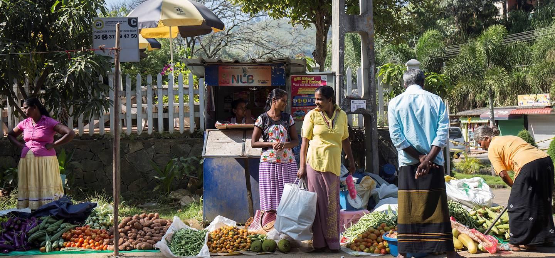 Scène de vie au marché local - Ella - Centre - Sri Lanka