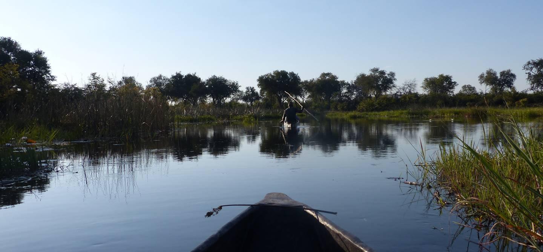 Safari en Mokoro, canoë traditionnel, sur la Rivière Khwai - Khwai - Botswana