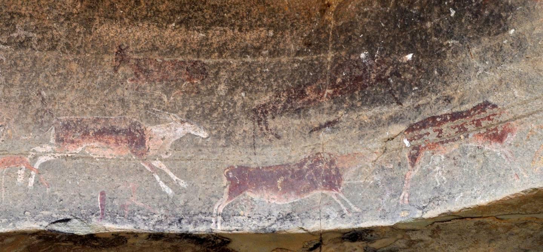 Drakensberg - Afrique du Sud